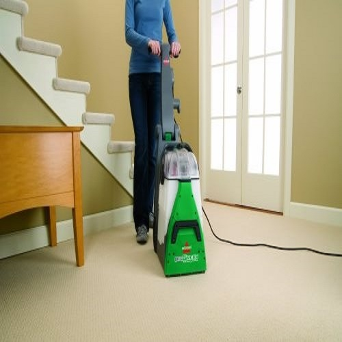 Best Rug Dog Hair: Best Carpet Cleaner Machine For Pet Urine In 2019