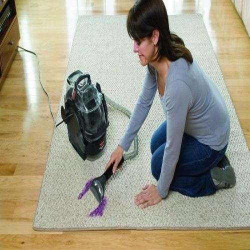 Best Carpet Cleaner Machine For Pet Urine In 2019 Best